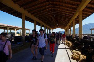 établissement Bellevue voyage italie - 2012/2013 - 5