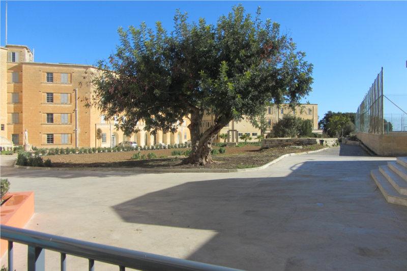 établissement Bellevue voyage Malte 2012/2013 - 2
