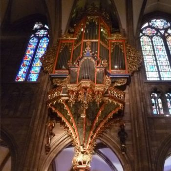 établissement Bellevue voyage Strasbourg 2011/2012 - 2