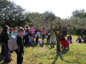 voyage collège Pont du Gard - 2013/2014 - 1